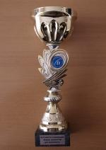 Кубок выставки инноваций, Челябинск