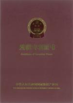 Патент Китая, обложка 1