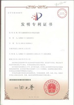 Патент Китая на ДАК, страница 2